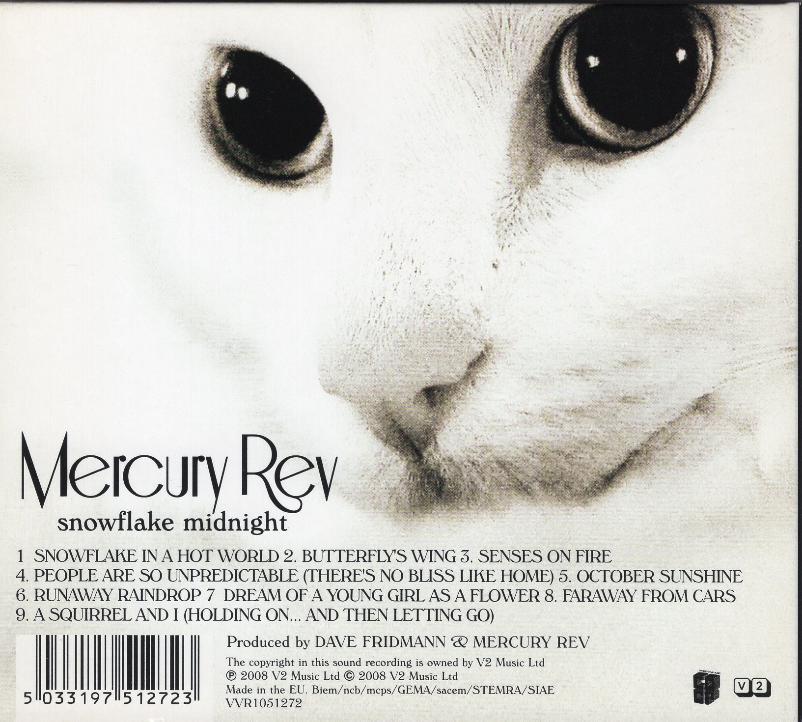 """Snowflake Misnight"" Mercury Rev"